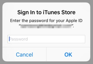 Sign In to iTunes Store